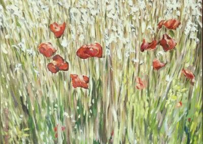 Anne Gourguet - Coquelicots